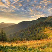 Красивые цитаты про природу (200 цитат)
