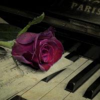 Красивые цитаты о музыке (250 цитат)