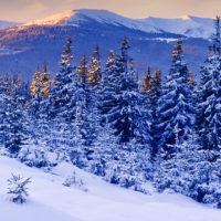 Красивые цитаты про зиму (150 цитат)
