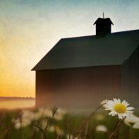 Цитаты про родительский дом (70 цитат)