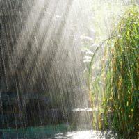 Красивые цитаты про дождь (300 цитат)