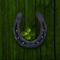 Цитаты про удачу в жизни (100 цитат)