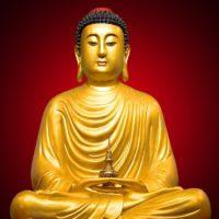 Самые лучшие и мудрые цитаты Будды (200 цитат)