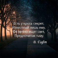 Красивые цитаты про тьму (50  цитат)