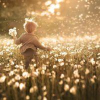 Статусы про счастье со смыслом(300 статусов)