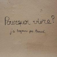 Красивые выражения на французском языке с переводом (100 выражений)